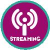 Sesión con retrasmisión por streaming